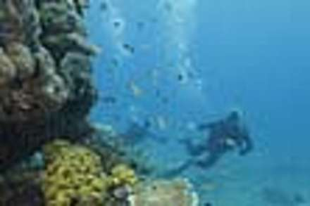 Introductory Diving on The Great Barrier Reef