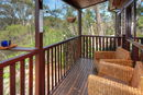 Deck with bush view