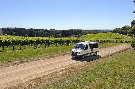 Winery Shuttle